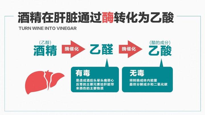养生先养肝,瑞维拓NMN解酒护肝,提升健康水平